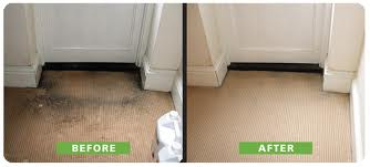 Cat Suzet Cleaners- Carpet Cleaning In London